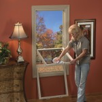 Woman cleaning Double Hung